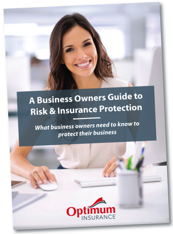 Business Risk Guide cover